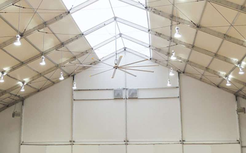 Are Workers in Industrial Tents with Natural Light More Productive?