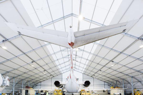 12427, Virgin Hangar, PVC, 2013, FS 9 lo res